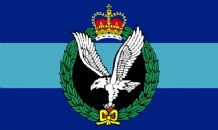 ARMY AIR CORPS MINI FLAG 22.5cm x 15cm